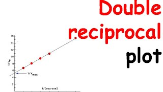 Double reciprocal plot