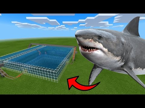 How To Make a SHARK Roller Coaster in Minecraft PE