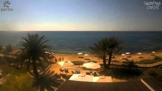 HD Webcam Time Lapse - Gecko - Formentera