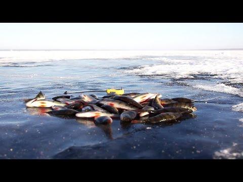рыбаки на увильдах