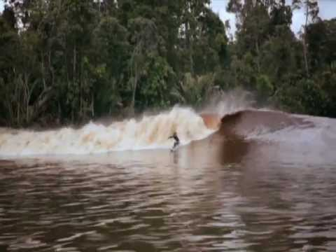 "Surfing On The River ""The Exciting Bono Pelalawan, Riau, Indonesia"