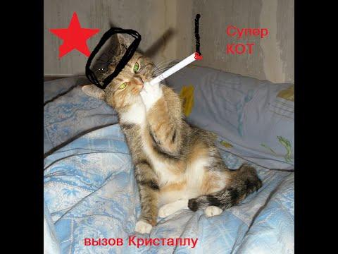 Супер кот кликер. Вызов для CRYSTAL  (whoyourenemy)