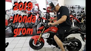 1. NEW TOY FOR THE CHANNEL / 2019 HONDA GROM