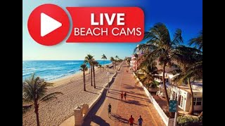 【アメリカ ハリウッドビーチブロードウォーク】ビーチ沿いの風景をLive Beach Cam