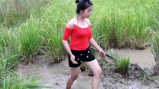 Video How to Fishing At cambodia - Amazing catches Fish in Pailin (part177) MP3, 3GP, MP4, WEBM, AVI, FLV Juli 2018