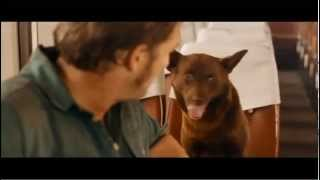 Nonton RED DOG - Official Trailer Film Subtitle Indonesia Streaming Movie Download