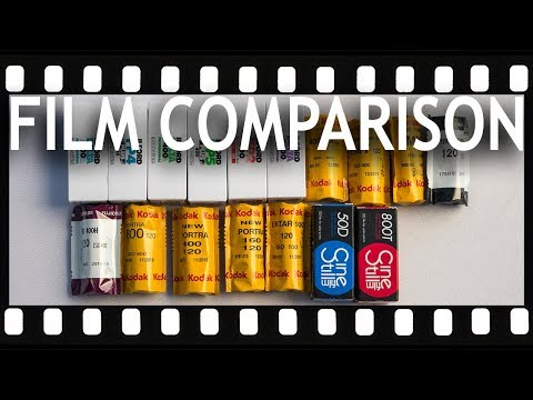 13 Color and Black and White Film Stocks Compared