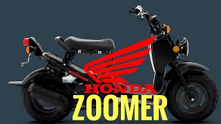 10. HONDA ZOOMER / RUCKUS Engine install