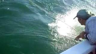 Ceduna Australia  City pictures : snapper fishing in South Australia Ceduna