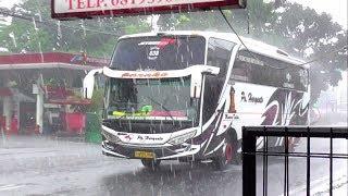 Video Terjebak Hujan Deras - Hunting Bus AKAP di Tajur Bogor MP3, 3GP, MP4, WEBM, AVI, FLV Juni 2018