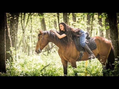 For Sale: Rocky Mountain Gelding - Fantastic smooth trail horse  $3700 (видео)