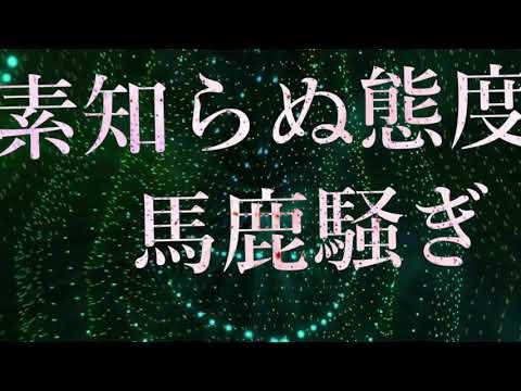 Non Stop Rabbit 『Refutation』 official lyric video 【ノンラビ】