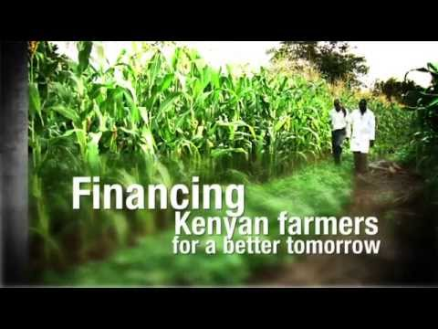 Financing Kenyan Farmers for a Better Tomorrow