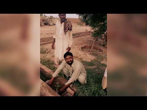 Ch shaban saho 31 and Dr mqsood Ahmed