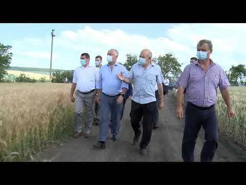 Șeful statului s-a familiarizat cu activitatea a doi agenți economici din raionul Florești