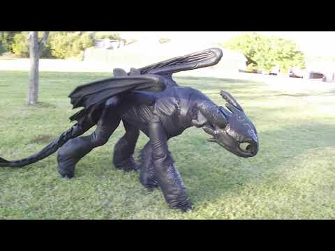 Toothless costume overview