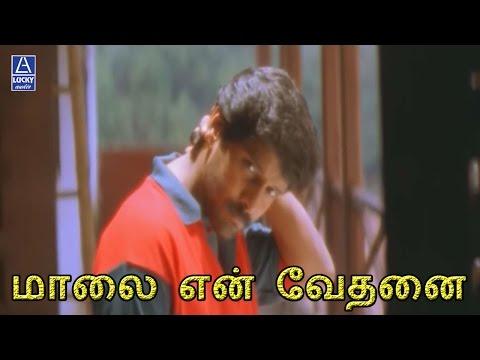 Video Maalai En Vethanai | Sethu | Vikram, Abitha, Sivakumar download in MP3, 3GP, MP4, WEBM, AVI, FLV January 2017