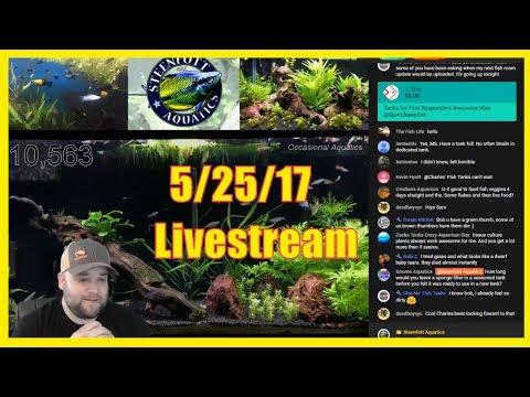 Aquarium Livestream - Goal Reached!! $1,000 Towards Tanks for Teachers_Legjobb videók: Akvárium
