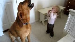 O bebezinho lindo e seu cachorro