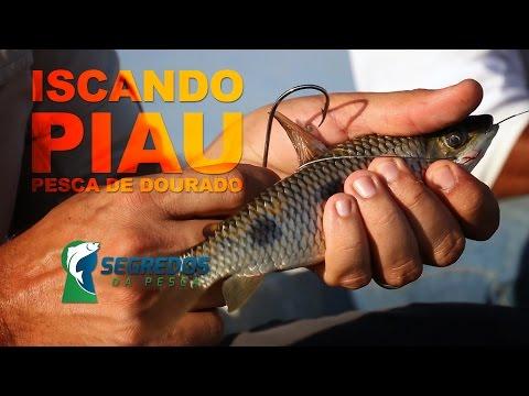 PIAU - COMO ISCAR CORRETAMENTE - PROGRAMA SEGREDOS DA PESCA