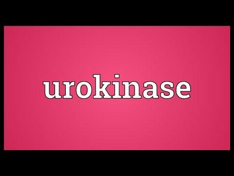 Urokinase Meaning