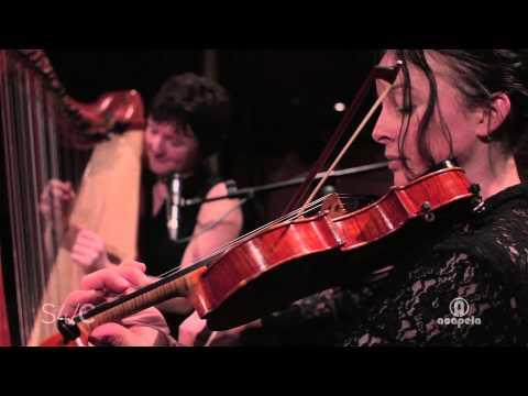 Elfen – Chwarae (Live at Acapela Studio)