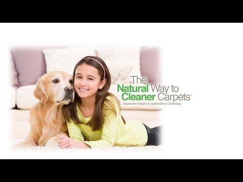 TNT Chem-Dry Best Carpet Cleaning Service Nashville, Hendersonville, Brentwood, Franklin TN.