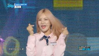 설명【TVPP】Berrygood - BibbidiBobbidiBoo, 베리굿 - 비비디바비디두 @Show Music core Berrygood #06: BibbidiBobbidiBoo @ Show Music core 20170527Berrygood : TaeHa, SeoYul, DaYe, SeHyeong, GoWoonWatch More Clips : http://goo.gl/brvLjlWebsite: http://cafe.daum.net/BerryGood FaceBook : https://www.facebook.com/Berrygoodofficial Twitter : https://twitter.com/BerryGood2014 instagram : https://instagram.com/berrygood_official/