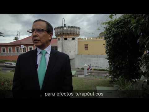 Rolando González sobre Legalización de la Marihuana