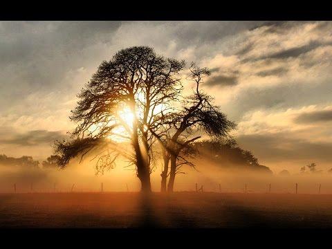 Sunset With Instrumental Calssical Raag - ( Sitar - Santoor - Flute - Tabla ) - by roothmens