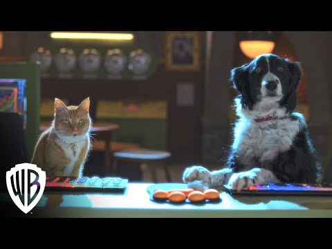 Cats & Dogs 3: Paws Unite! | Trailer | Warner Bros. Entertainment