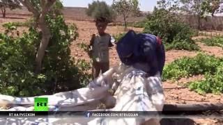 Демократические силы Сирии обезвредили тысячи мин ИГ в Манбидже