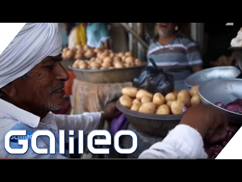 Indien: Verrücktes Indien - die Veggie-Stadt | Galileo  ...