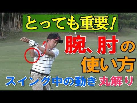 ゴルフスイングの手、腕、肘の使い方、動かし方、コッキング等をスギプロが …
