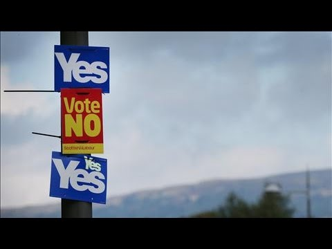 SCOTTISH - Several surveys ahead of Thursday's Scottish referendum suggested a narrow lead for the pro-union camp. The proportion of undecided voters meant the result could still go in favor of those...