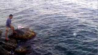 Video fishing tuna jeddah 18sep2012 MP3, 3GP, MP4, WEBM, AVI, FLV Juli 2018