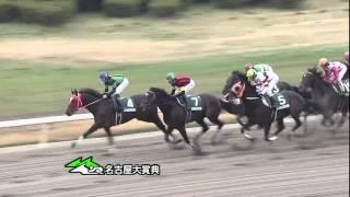 2013年名古屋大賞典