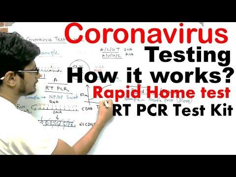 Coronavirus testing in India | Coronavirus test at home and RT PCR test kit