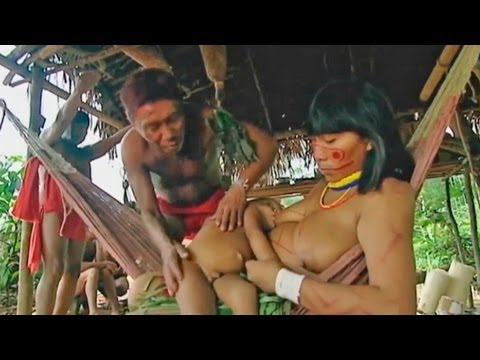 Drugs - Sanema tribe know countless remedies for many of the ailments they suffer. But the disease here has a religious significance because the etiology reside in m...