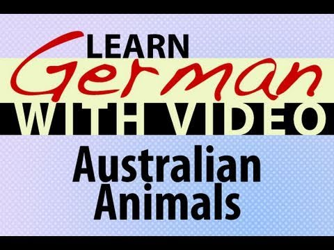 Learn German with Video – Australian Animals