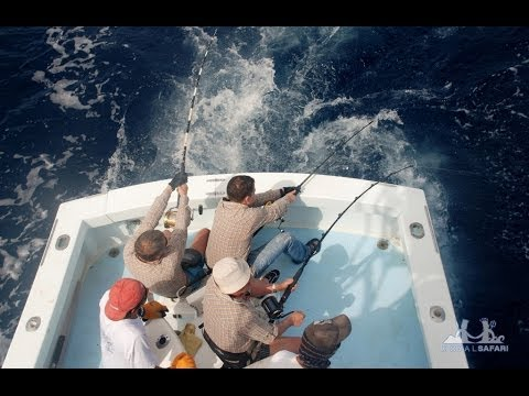рыбалка на атлантическом океане с берега