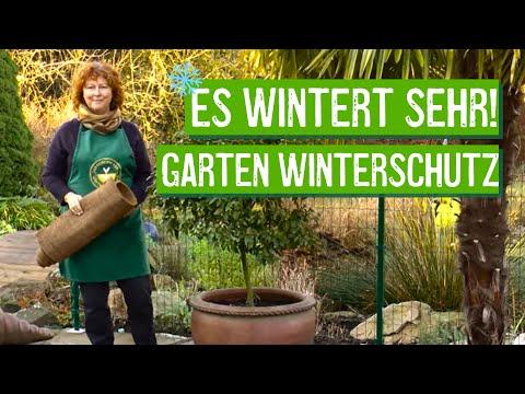Winterschutz im Garten - Der Grüne Tipp