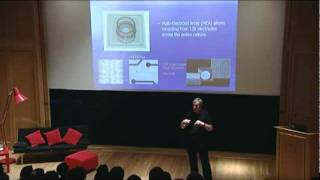TEDxOxford - Kevin Warwick - Cyborg Interfaces