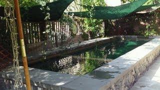 Swim Jet Pool by Huntington Pools & Spas
