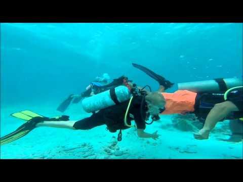 duiken!!! 1