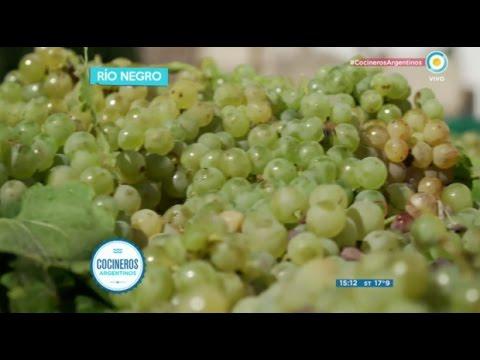 El camino de la uva