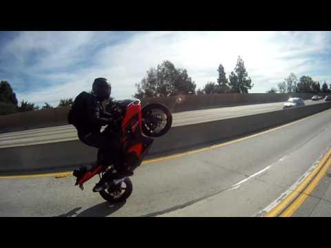 Freeway Wheelie gsxr 1000