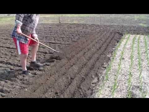 Маркер для посева семян
