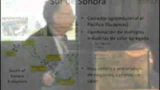Ecosistemas de negocios: un nuevo camino para Argentina?