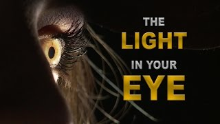 Свет в ваших глазах